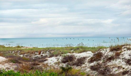 Oceanside Ameila Island